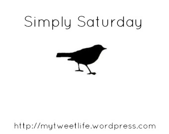 Simply Saturday – 'My Tweet Life' & Why All the 'Bird' References
